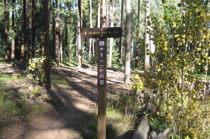 trailhead segment 4 colorado trail