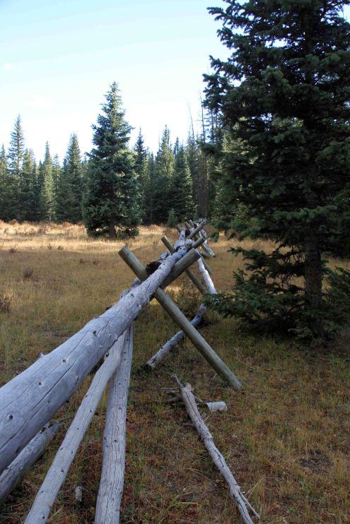 IMG_6432 fence