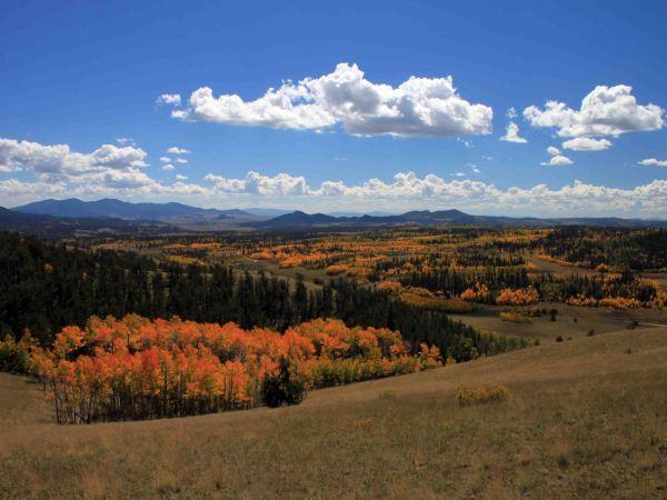 view from the Colorado Trail Segment 5, fall hikes near denver