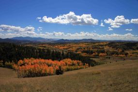 view from the Colorado Trail Segment 5, fall hikes near denver