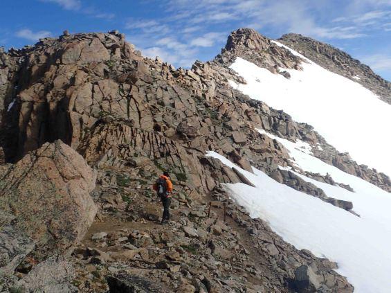 david on the ridge of mount massive