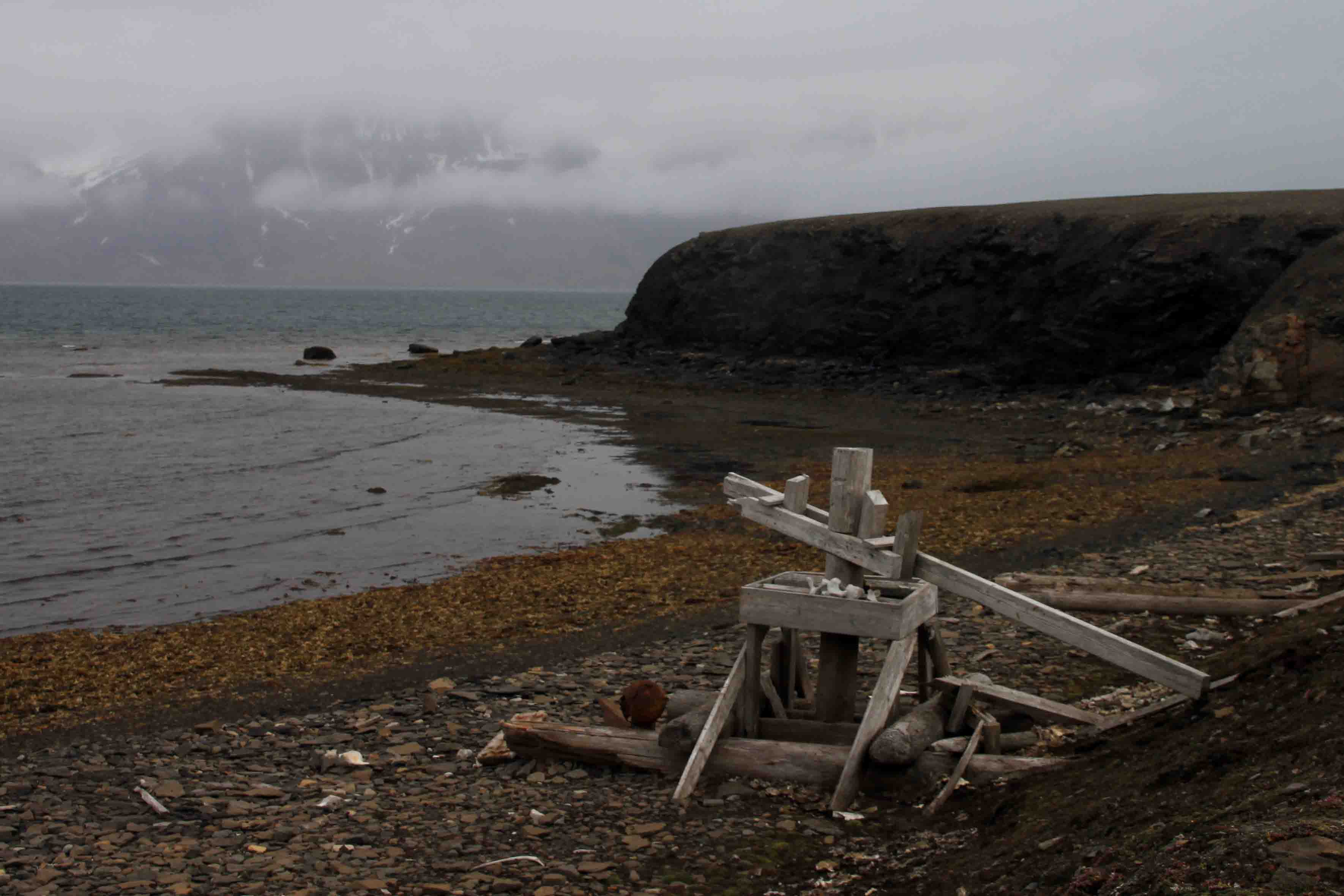 relics in southwest spitsbergen