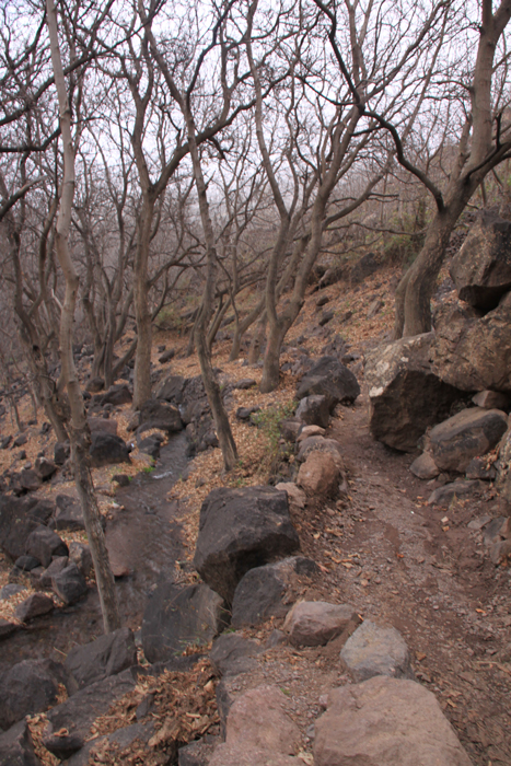 path in the high atlas mountains