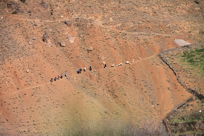 hikers in the high atlas mountains
