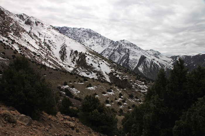 view of snowcapped mountains from tizi mzik trail