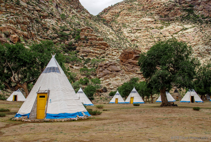 eden camp in Khogno Khan National Park