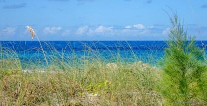 bahama beach