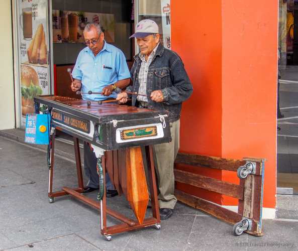 marimba players
