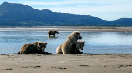 Katmai National Park and Preserve