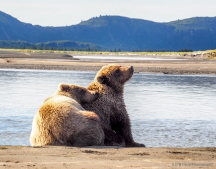 Katmai National Park and Preserve