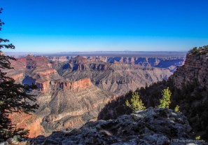 The Grand Canyon's North Rim
