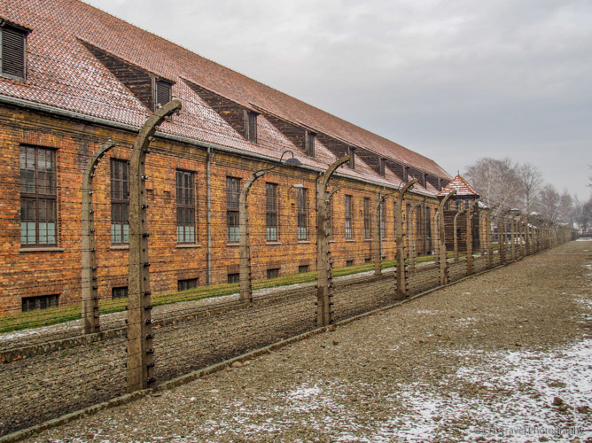 double row of fence at Auschwitz