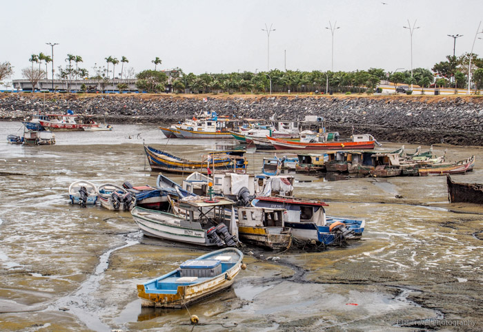 Fishing Harbor in Panama City