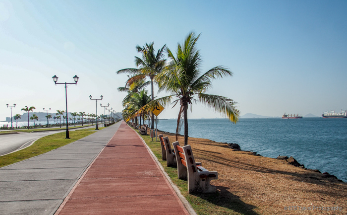 Cinta Costera along the causeway in Panama City