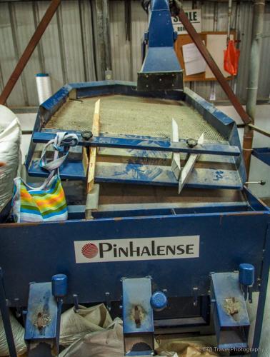 coffee bean sorter in Boquete