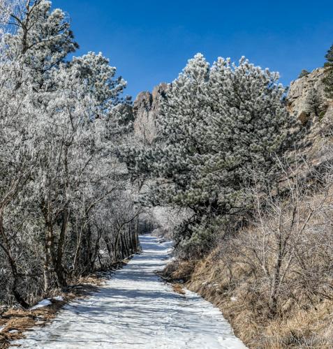 snowy trail at NCAR
