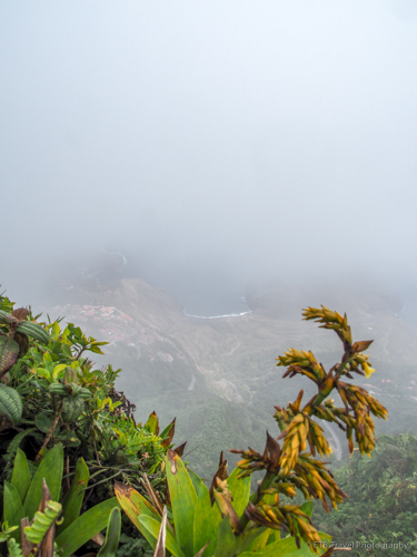 view from Mt. Scenery in Saba