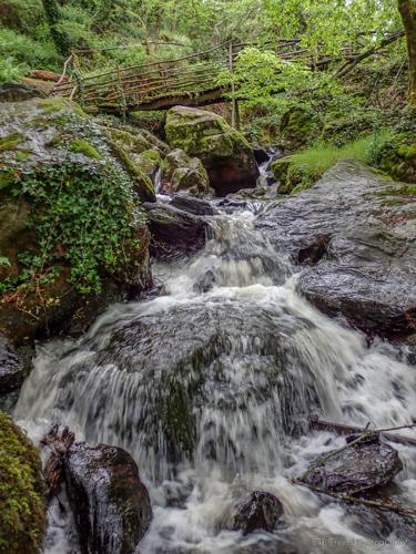 cascade bialet