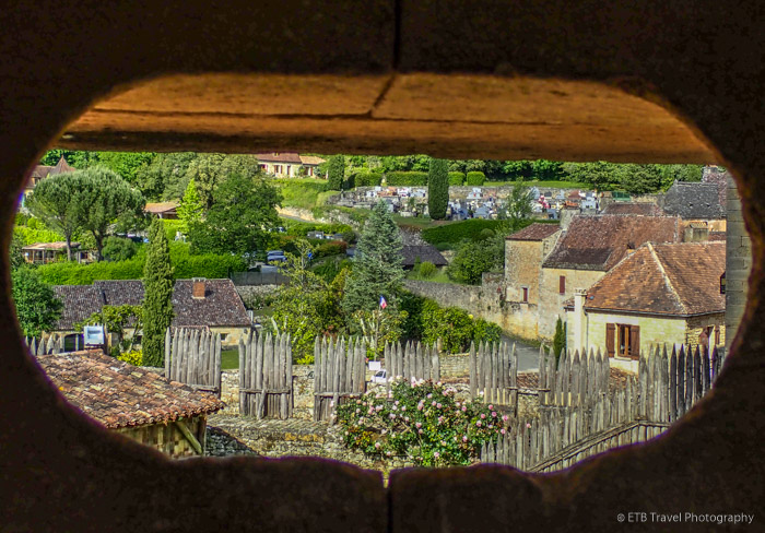view from chateau de beynac