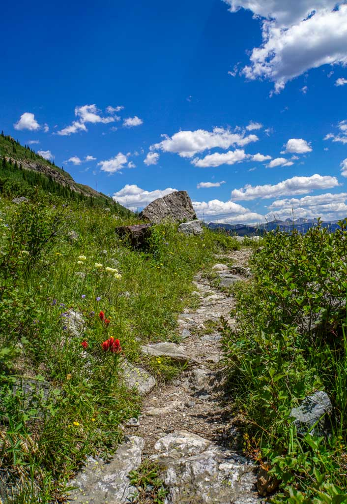 Baker Gulch Trail in Rocky Mountain National Park