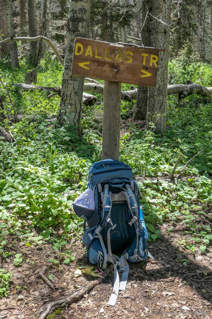pack resting against Dallas Trail Sign