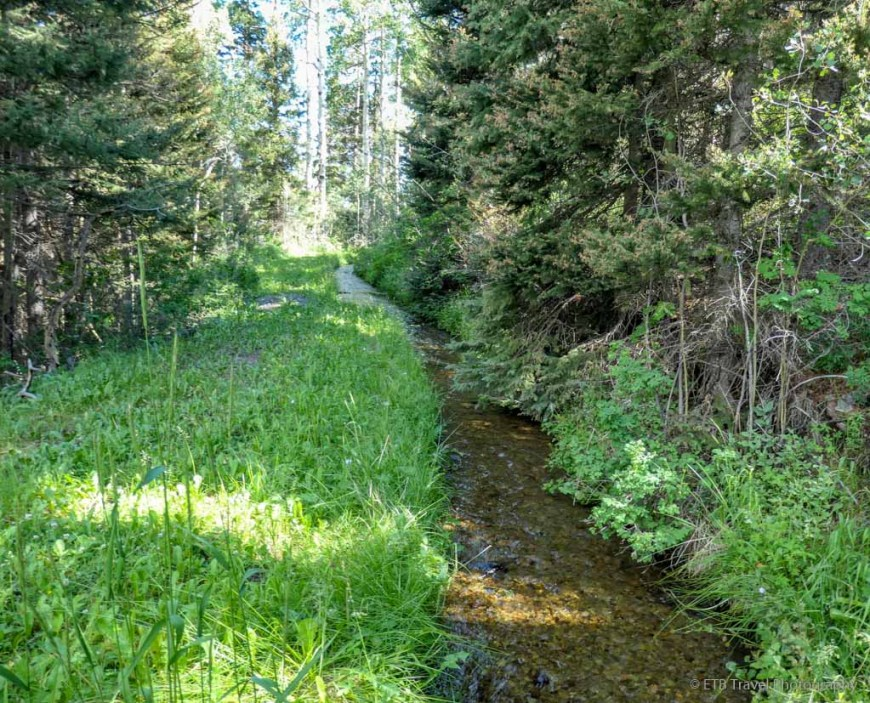 Irrigation ditch on the Sneffels Traverse
