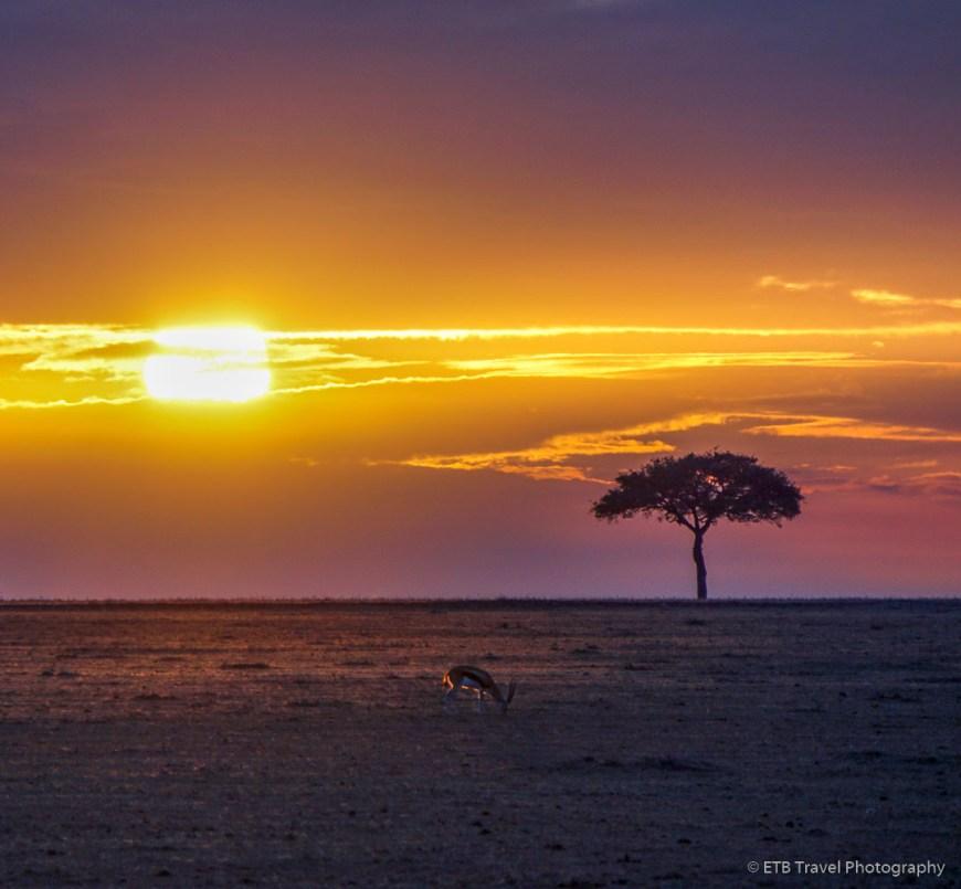 sunrise in the Masai Mara