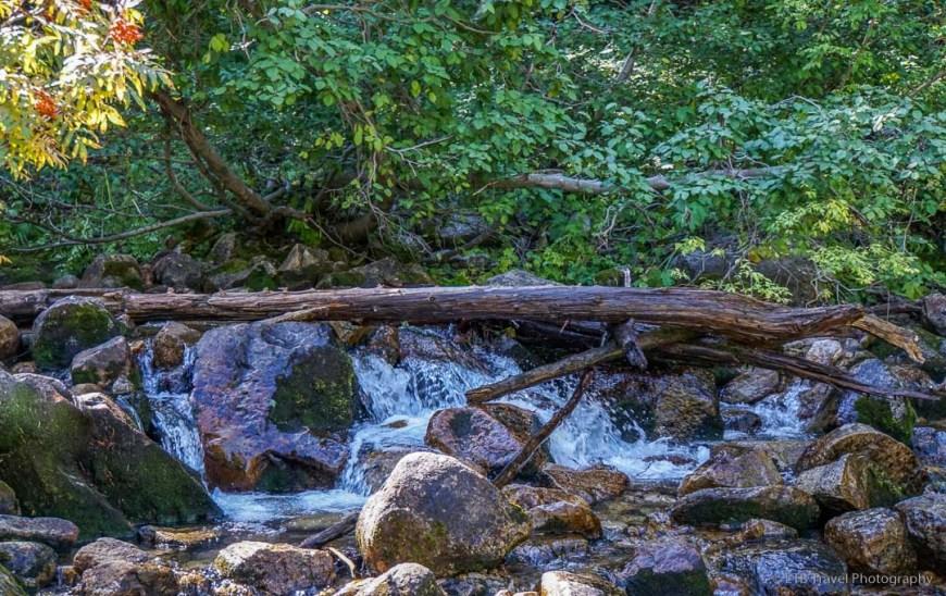 creek at red pine lake junction