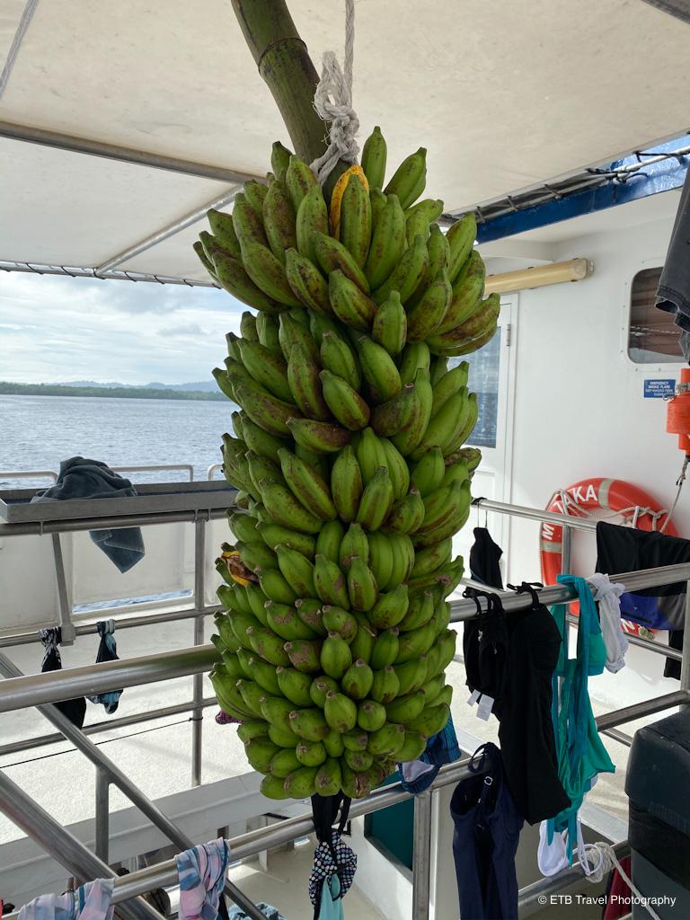 bananas on taka