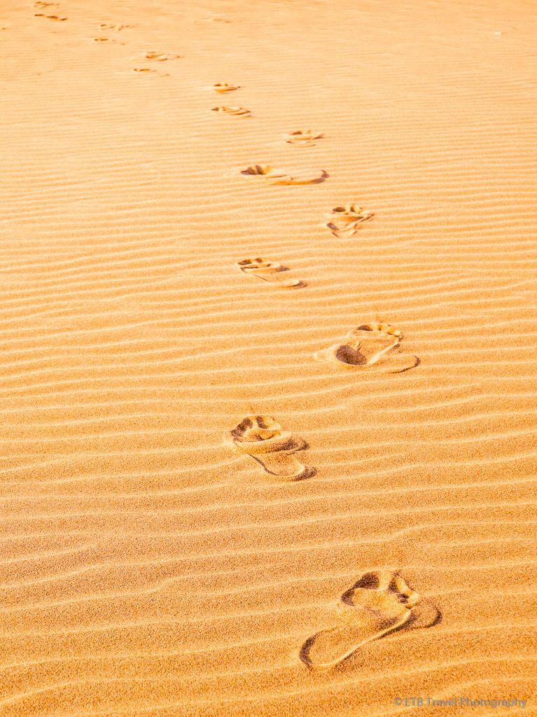 footprints in Sharqiya Sands