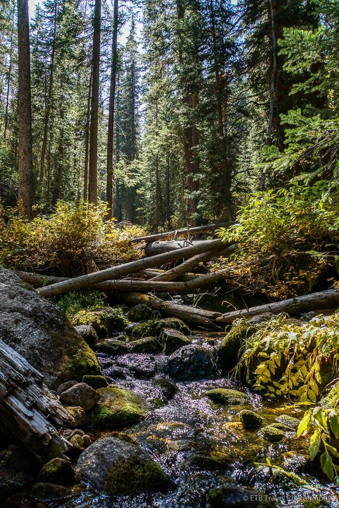 creek on Grouse Lake Trail