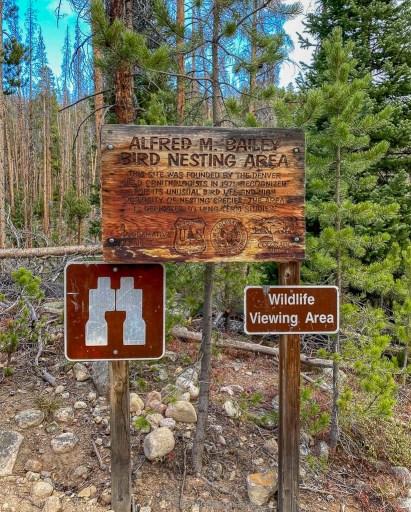 Alfred M Bailey Bird Nesting sign