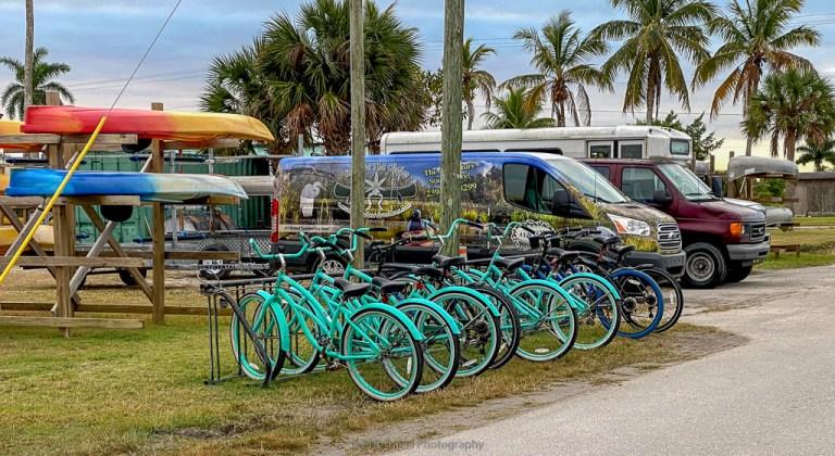 bikes in everglade city