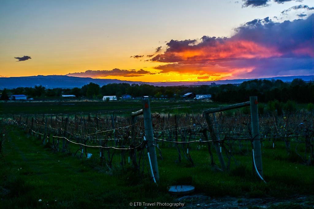 sunset at peachfork orchard and vineyard