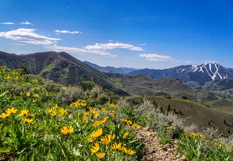taylor canyon loop hike in sun valley