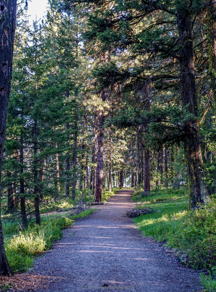 peninsula trail in ponderosa state park