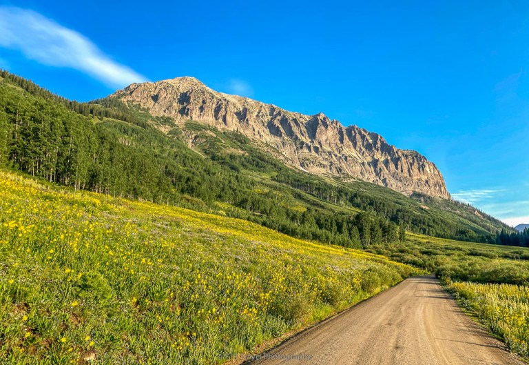 FS 317 to Judd Falls in Crested Butte