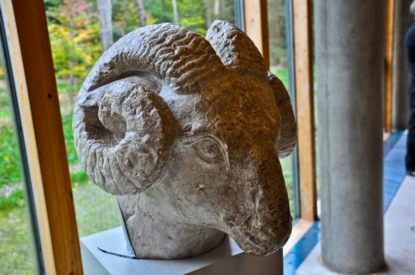 Limestone head of a ram. Chinese, Tang Dynasty, 618-907 CE.