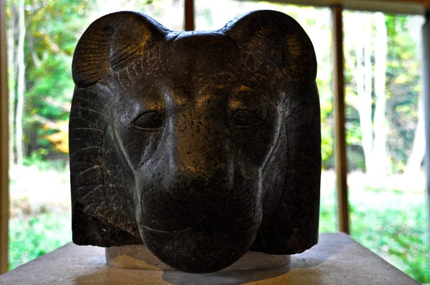 Granite head of the goddess Sekhmet. Egyptian, from Karnak, temple of Mut. 18th Dynasty, reign of Amenophis III, 1402-1363 BCE.