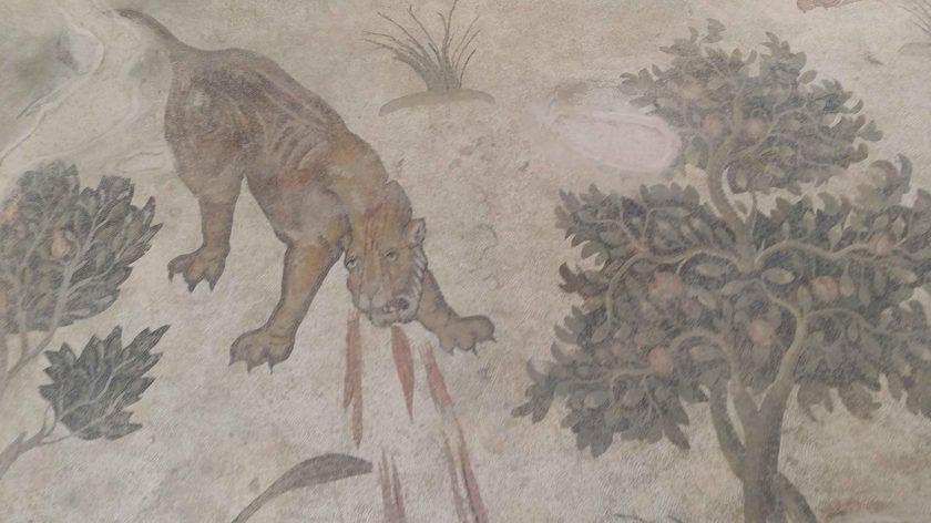 Lion hunting Halepilbahce mosaic. Photo © Alkans Tours, Nicholas Kropacek