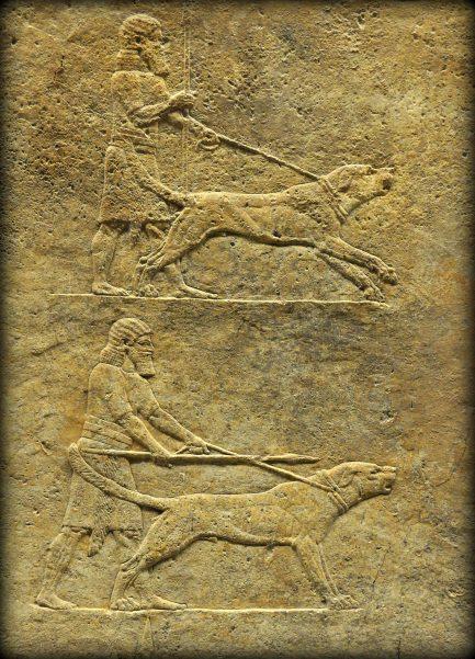 Assyrian Lion