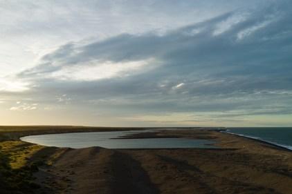 A la saison de la reproduction, cette plage est rempli d'éléphants de mer!
