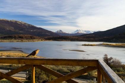 Parc national Tierra del Fuego, sans commentaires.