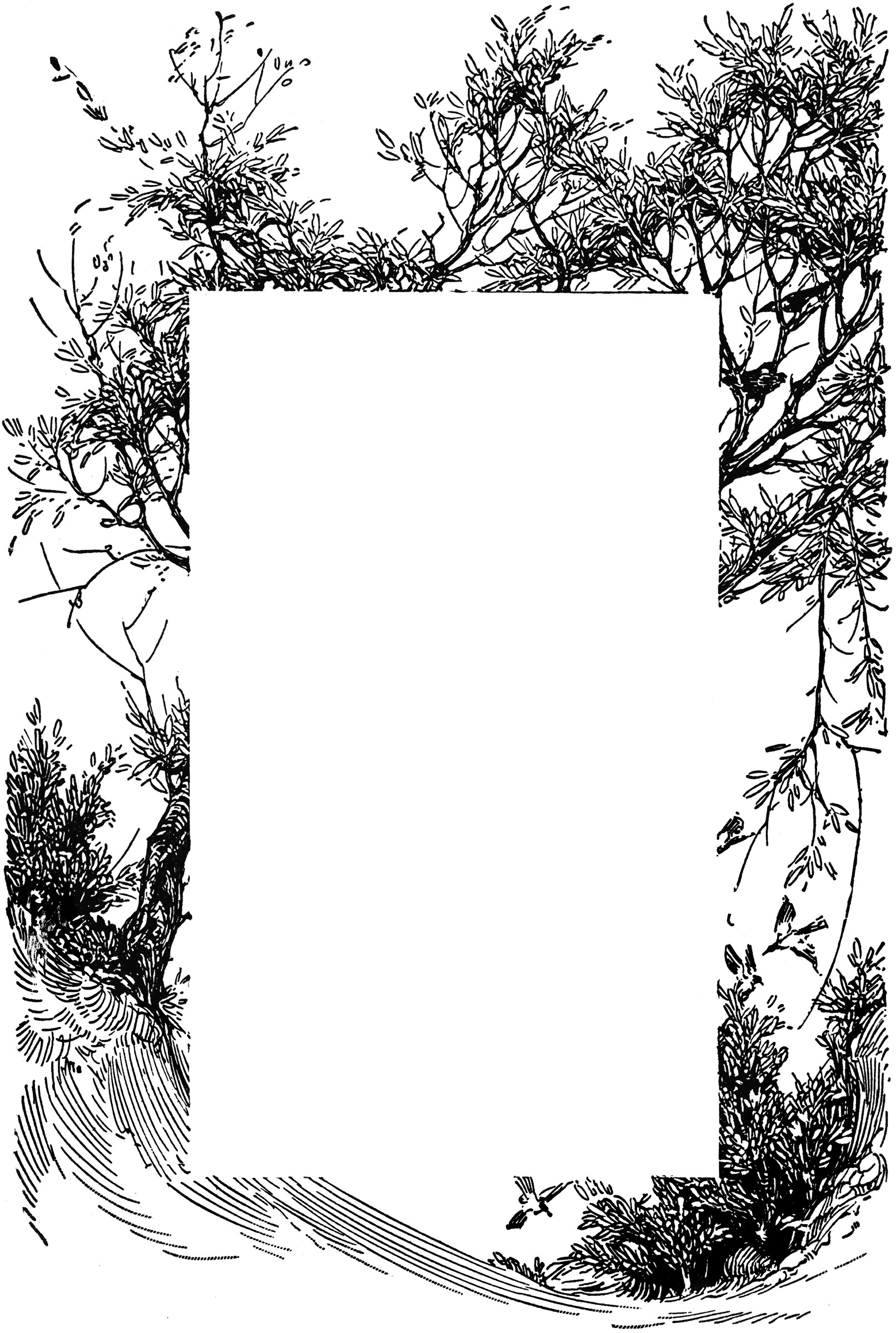 Tree ClipArt ETC