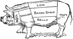 Pig Diagram | ClipArt ETC