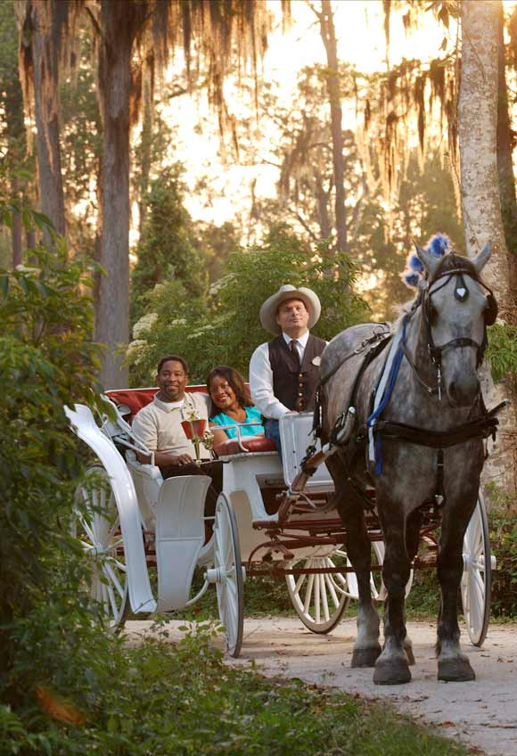 Carriage ride at the Walt Disney World Resort