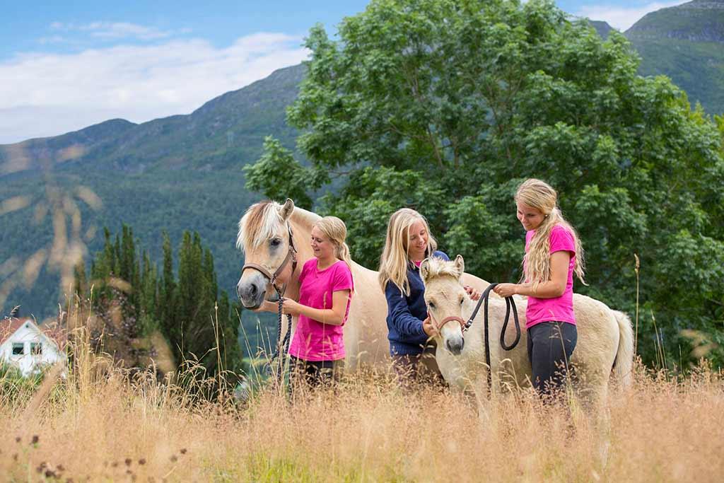 Horse adventures