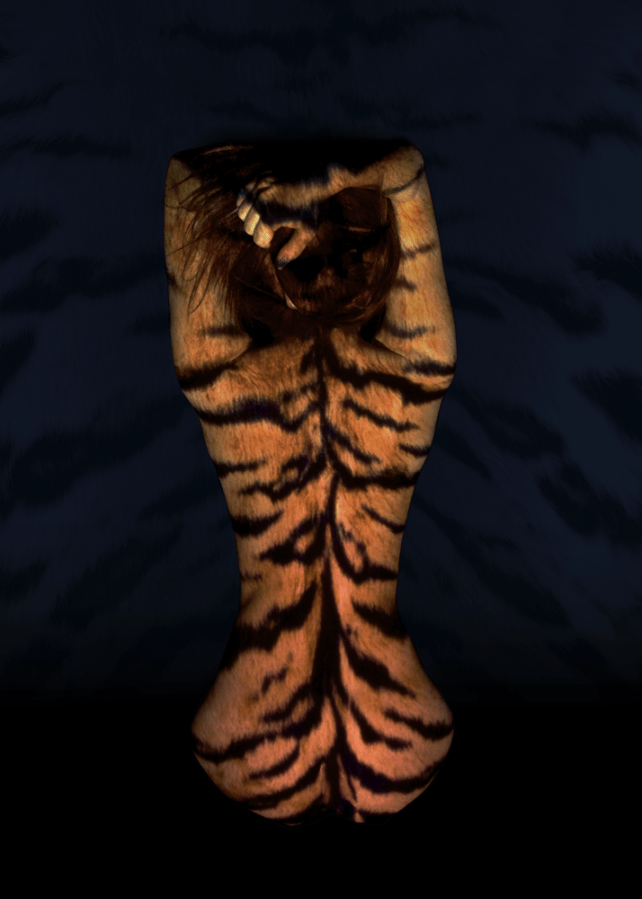 modeling photography, art nude, nude photography, projection photography, light projection, tiger, tiger print