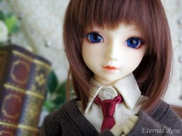 【SDサキ:京】女子高生セット(ブラウンカーデ)とデフォルトウイッグ