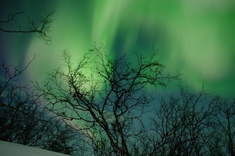 green and pinkish purple colors of the aurora in sweden
